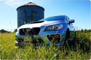 This is a picture of a silver 2016 subaru impreza WRZ in a field.